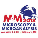 Microscopy & Microanalysis 2018 Meeting