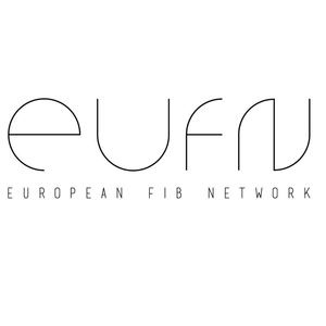 European FIB Network Workshop