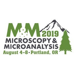Microscopy & Microanalysis